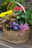Colorful floral gift basket Royalty Free Stock Photo