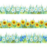 Colorful floral seamless borders. Bright background - grass and flowers. Hand-drawn watercolor illustration. royalty free illustration