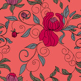 Colorful floral seamless wallpaper Royalty Free Stock Image