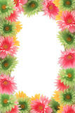 Colorful floral spring border Stock Image