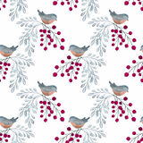 Colorful floral watercolor illustration. Watercolor birds, twigs with berries on a white background Stock Illustration