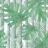 Colorful floral watercolor illustration. Palm leaves, monstera on white background stripes Vector Illustration