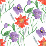 Colorful floral watercolor illustration. Vintage hand drawn red, purple flowers on a white background royalty free illustration