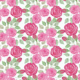 Colorful floral watercolor illustration. Vintage hand drawn red roses on a white background stock illustration