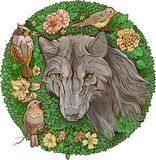 Colorful floristic image . wolf and birds Stock Photo