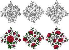 Colorful flourish motifs Royalty Free Stock Photos