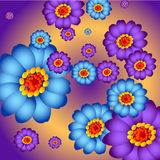 Colorful Flower Stock Images