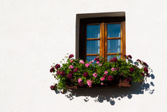 Colorful Flower Arragement on the windows in Austria Royalty Free Stock Photo
