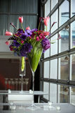 Colorful flower arrangement royalty free stock image