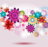 Colorful Flower Background. Stock Photos