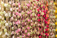 Free Colorful Flower Background Stock Images - 50844254