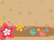 Colorful flower with background Royalty Free Stock Photos