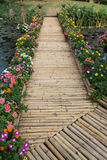 Colorful flower with bamboo bridge Stock Image