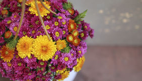 Colorful flower basket Royalty Free Stock Photos