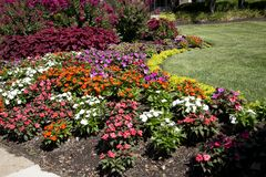 Colorful flower bed in city garden ST Louis MO USA. Colorful flower bed in city garden ST Louis, MO USA stock image