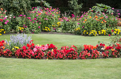 Colorful flower beds Royalty Free Stock Images