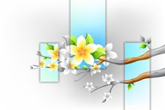 Colorful Flower blooming on branch of Tree Royalty Free Stock Photos