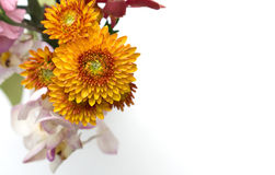 Colorful flower bouquet arrangement isolated Royalty Free Stock Photo