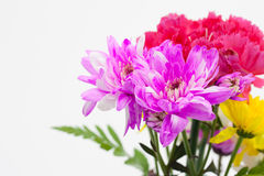 Colorful flower bouquet arrangement in vase Royalty Free Stock Photography