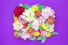Colorful flower bouquet background made of colorful carnation flowers wall for background and wallpaper stock photos