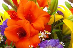 Colorful flower bouquet . Royalty Free Stock Photo