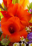 Colorful flower bouquet . Royalty Free Stock Images