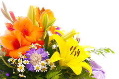 Colorful flower bouquet . Stock Photos
