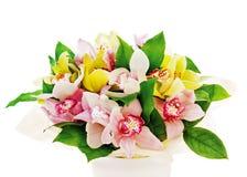 Colorful flower bouquet from orchids arrangement centerpiece Stock Photography