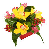 Colorful flower bouquet from orchids and lilies Royalty Free Stock Photo