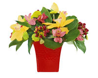 Colorful flower bouquet from orchids and lilies Stock Images