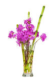 Colorful flower bouquet from purple rhododendron flowers. Stock Photography