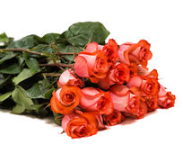 Colorful flower bouquet from red roses on white background. Closeup Royalty Free Stock Photo
