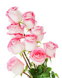 Flower bouquet from roses a isolated on white Stock Image