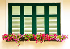 Colorful Flower Boxes On Windows Stock Photos