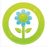 Colorful flower button Stock Photography