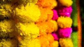 Colorful flower chain in the market of bombay royalty free stock photo