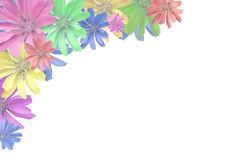 Colorful flower frame. Flowers isolated on white and framing copy space Stock Photo