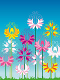 Colorful flower garden. On blue background Stock Image