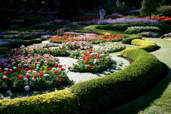 Colorful flower garden in Mae Fah Luang, Chiang Rai, Thailand Royalty Free Stock Photography