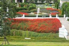 Colorful Flower Garden Stock Image
