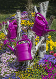 Colorful flower garden with watering can hanging down Royalty Free Stock Photo