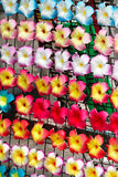 Colorful flower hairpin Royalty Free Stock Photos