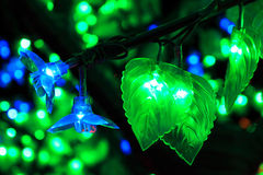 Colorful Flower Of Light Stock Photo