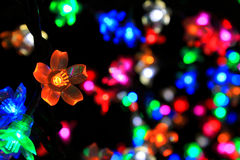 Colorful Flower Of Light Royalty Free Stock Photos
