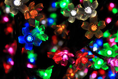 Colorful Flower Of Light Stock Image