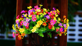 Colorful flower. Many color flower is so beautiful . Pink yellow red purple blue color.look for close up and portrial Royalty Free Stock Images