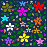 Colorful flower, Multi color flower background Stock Images
