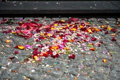 Colorful flower petals on stairs on registry office royalty free stock photos