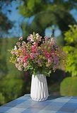 Colorful flower posy in a vase. Colorful bunch of summer flowers in a white vase, table cloth blue checkered. decoration at home patio. blurry garden background royalty free stock image