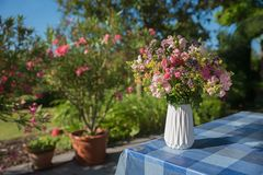Colorful flower posy in a vase. Colorful bunch of summer flowers in a white vase, table cloth blue checkered. decoration at home patio. blurry garden background stock photo